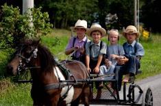 معرفی کامل فرقه مسیحی آمیش (Amish)