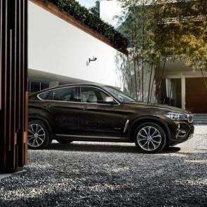 #2 The BMW X6 xDrive50i in Dark Olive metallic