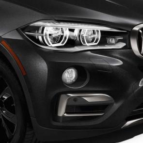 The BMW X6 xDrive50i with Light-alloy wheels star spoke 491