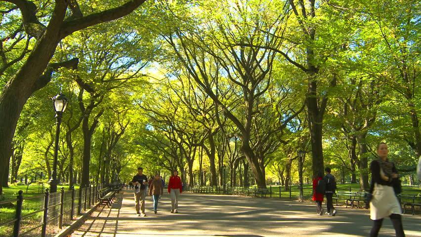 افراد لخت از این پس می توانند در فرانسه براحتی در پارک تفریح کنند