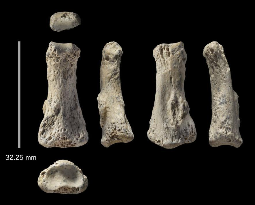 کشف بقایای 88 هزار ساله، انسان مدرن در عربستان سعودی