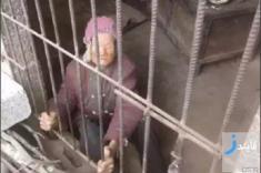 ماجرای تکان دهنده نگهداری پیرزنی 92 ساله در خوکدانی