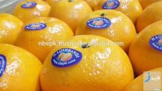 عرضه نارنگی پاکستانی در ایران با 5 برابر گرانتر از قیمت خرید!