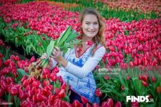 تصاویری تماشایی از فصل رویش گلهای لاله در هلند