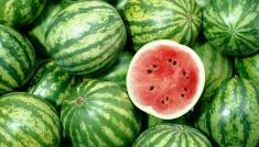 عمان هندوانه و خربزه صادراتی ایران را پس فرستاد!