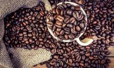 جمع آوری یک نوع قهوه خطرناک از بازار آمریکا