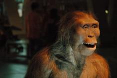 هزاران سال تاریخ انسانها با دیانای بازسازی شد