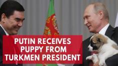 رییس جمهور ترکمنستان، به پوتین یک سگ هدیه داد!