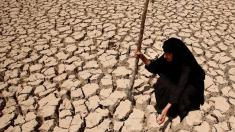 درخواست کمک وزیر نیرو از مردم ایران
