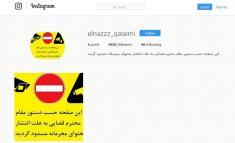 صفحه اینستاگرام مربیان رقص مشهور ایرانی مسدود شد