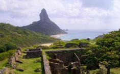 اتفاقی بی سابقه در برزیل / تولد یک نوزاد در جزیره ای که زایمان در آن ممنوع است