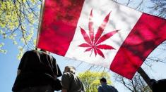 مصرف تفریحی ماریجوانا در کانادا آزاد شد + احتمال آزاد شدن فروش حشیش!